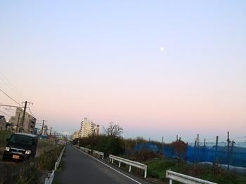 IMG_4246-2.jpg