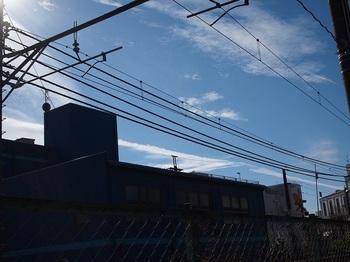 P1271439.JPG