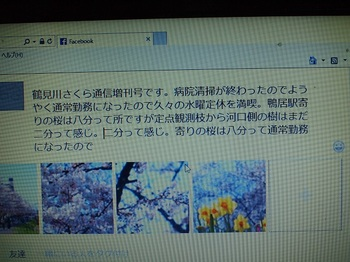 P4054053-2.jpg